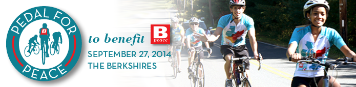 Bpeace PP2014 BannerForHomepage