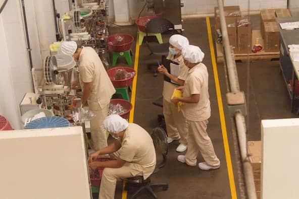Miniempaques workers